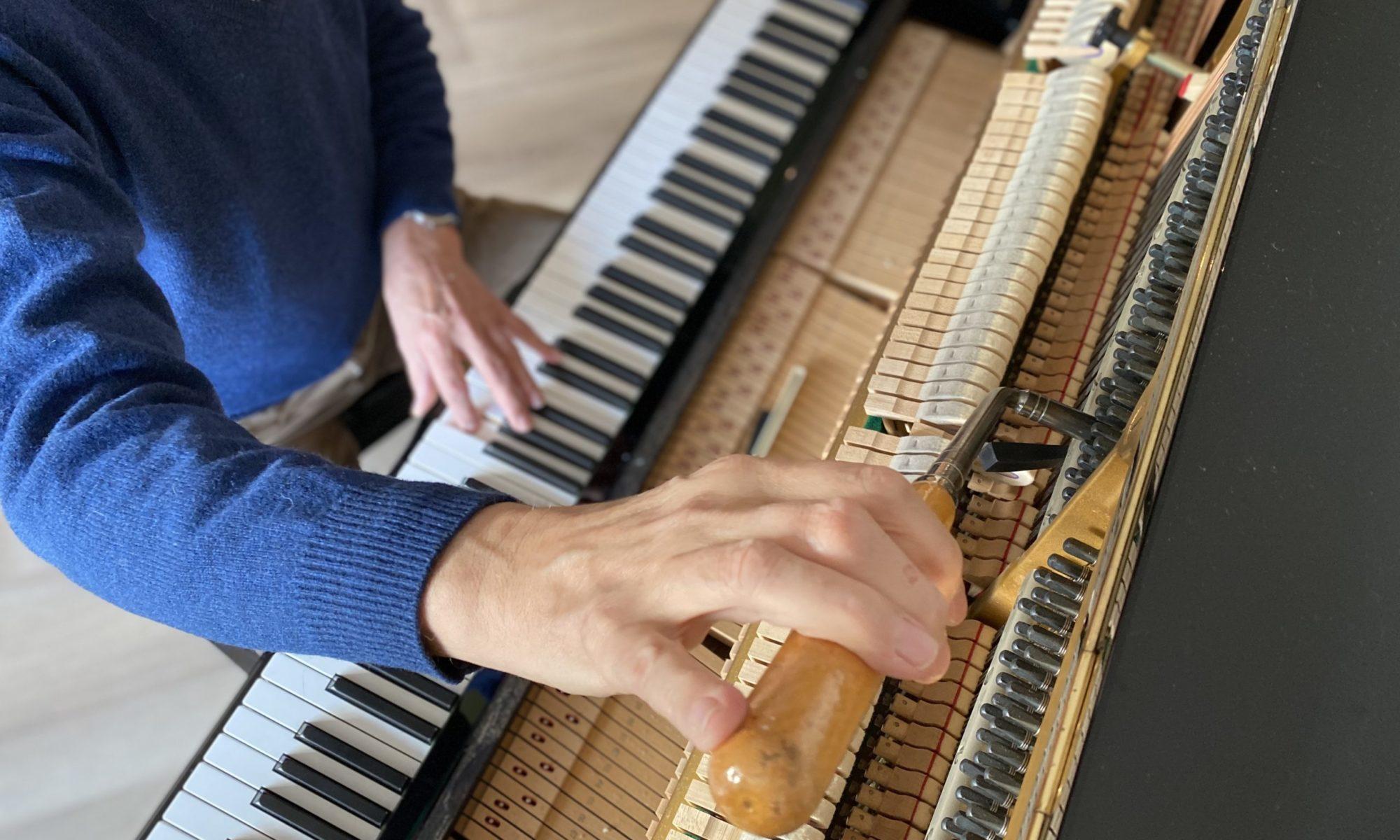 Pianostemmer Cees Gootjes